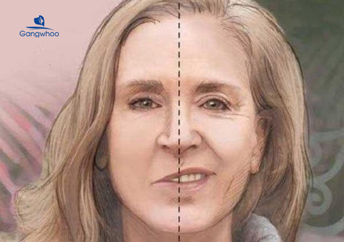 The details about facial paralysis and its treatment